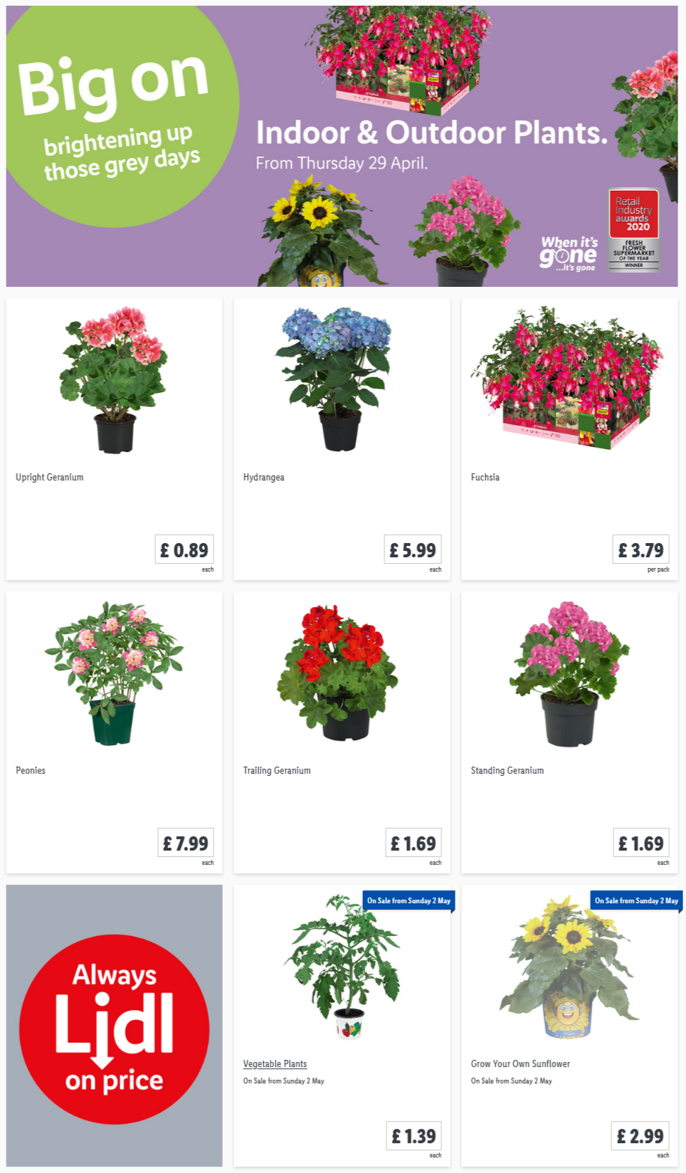 LiDL Indoor & Outdoor Plants From 29th April 2021 LIDL Offers this Thursday